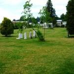 Six cemeteries in the spotlight - Part II