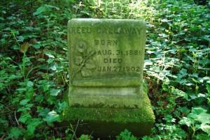 Reed Callaway